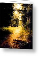 The Trail Greeting Card
