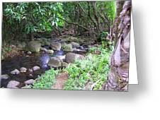 The Trail By The Creek Greeting Card