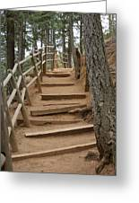The Trail To The Top Greeting Card