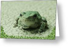 The Tree Frog Greeting Card