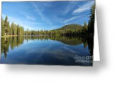 The Tree Line Greeting Card