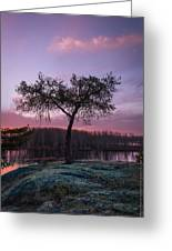 The Tree Of Life Greeting Card by Dustin Abbott