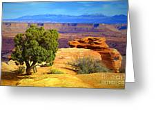 The Tree The Canyon And The Mountains Greeting Card