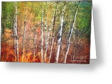 The Trees And The Colour Greeting Card