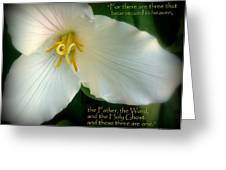 The Trinity Scripture Art Greeting Card by Cindy Wright