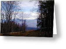 The Vermont Woods - Stowe Greeting Card