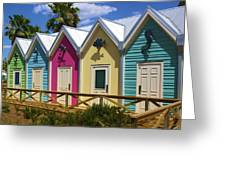 The Villages Florida Greeting Card