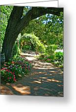 The Vineyard Walk Greeting Card by Sotiri Catemis