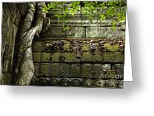 The Wall Ta Prohm 2 Greeting Card