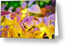 The Warmth Of Autumn Glow Abstract Greeting Card
