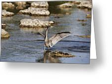 The Water Dance V4 Greeting Card
