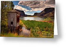 The Water Shed Greeting Card by Tara Turner