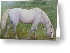 The White Horse Greeting Card by Kerri Ligatich