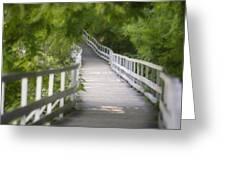 The Whitewater Walk Boardwalk Trail Greeting Card