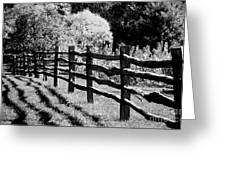 The Wooden Fence Greeting Card