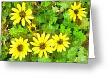 The Yellow Daisies  Greeting Card