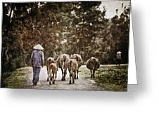 They Walk Together Greeting Card