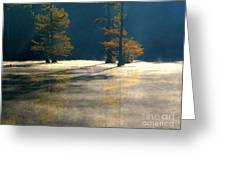 Thick Mist Greeting Card