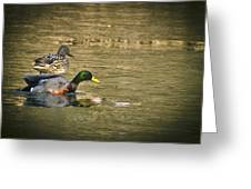 Thin Ice Wet Duck Greeting Card