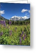 This Is British Columbia No.70 - Summer At Mount Robson Greeting Card