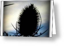 Thistle In The Sky Greeting Card