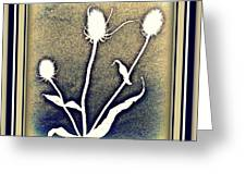 Thistles Grouping Greeting Card