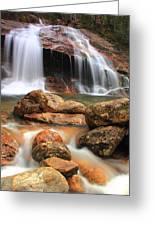 Thomson Falls Greeting Card