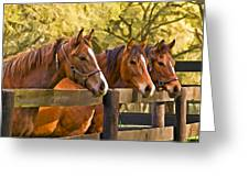 Three Friends Greeting Card