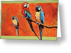 Captive Birds And Abstracted Rain Forest   Greeting Card