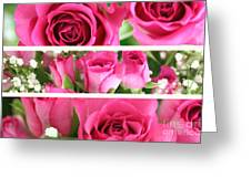 Three Pink Roses Landscape Greeting Card