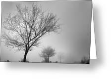 Three Silhouettes In The Rain Greeting Card