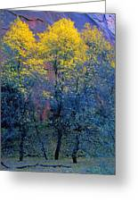 Three Thin Autumnal Trees In Front Of Greeting Card