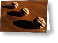 Three Walnuts Photograph Greeting Card