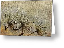 Three Wishes Greeting Card by Artist and Photographer Laura Wrede