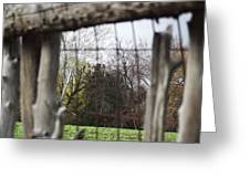 Through The Eye Of The Stick Wood Fence Greeting Card