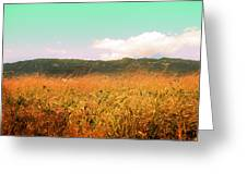 Through The Grasses Greeting Card