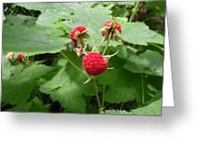 Thumble Berry Greeting Card