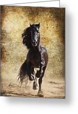 Thundering Stallion Greeting Card