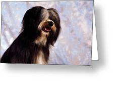 Tibetan Terrier Greeting Card