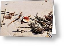 Tidal Treasures Greeting Card