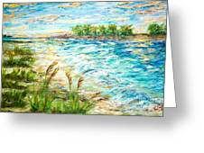 Tides At Sunset Greeting Card by Mary Sedici