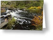 Tidga Creek Falls 1 Greeting Card