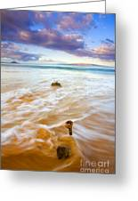 Tied To The Sea Greeting Card
