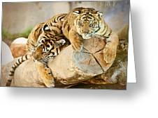 Tiger And Cub Greeting Card