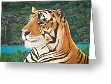 Tiger Falls Greeting Card