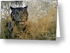 Tiger In Infrared Greeting Card