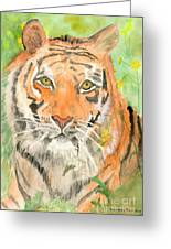 Tiger In The Meadow Greeting Card by Delores Swanson