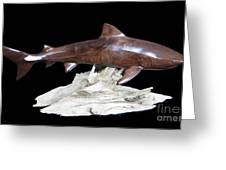 Tiger Shark Greeting Card by Kjell Vistnes