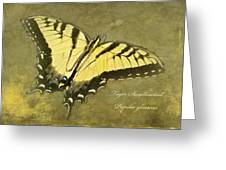 Tiger Swallowtail Butterfly - Papilio Glaucas Greeting Card