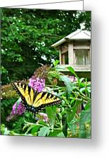 Tiger Swallowtail By The Bird Feeder  Greeting Card